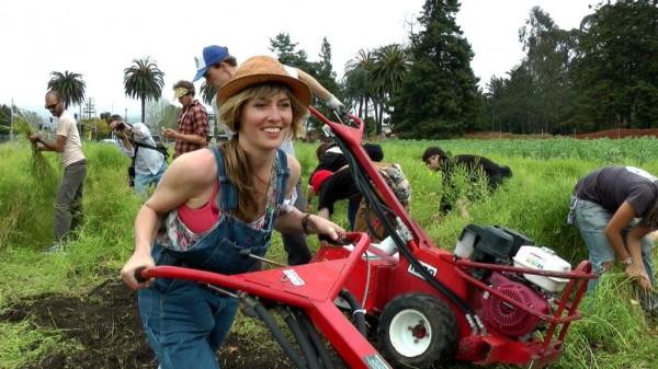 Film - Occupy The Farm