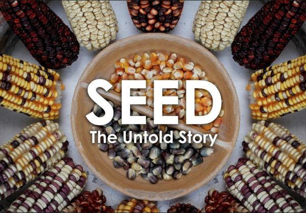 FILM - SEED: The Untold Story